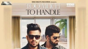 Too Much To Handle Lyrics – Tanny DH
