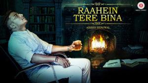 Raahein Tere Bina Lyrics – Ashish Benjwal
