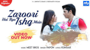 ZAROORI HAI KYA ISHQ MEIN LYRICS – Meet Bros