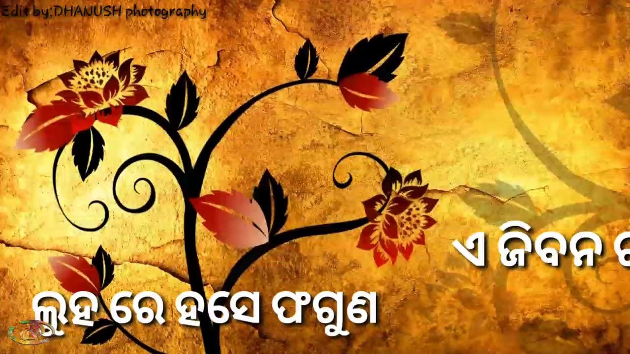 Aai badhe prama 🌷odia status lyrics video song