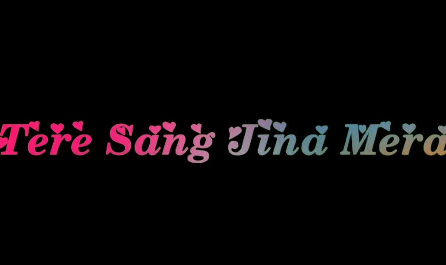 Tere bin nai lagda Dil Mera dholna   new Hindi lyrics status video