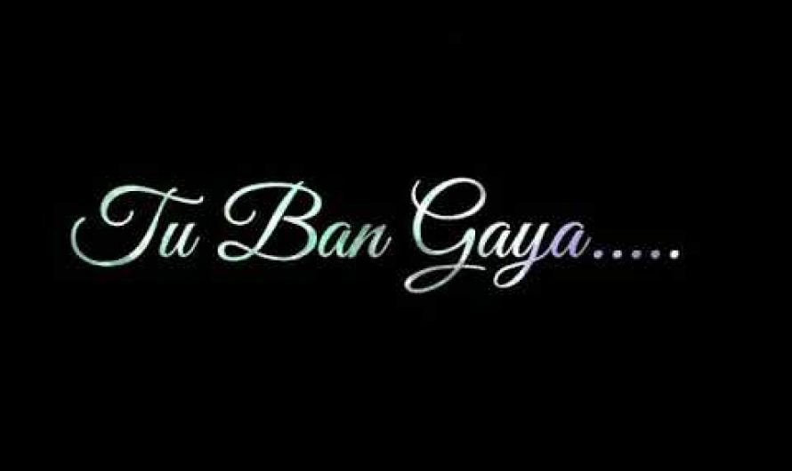 Tuzhe Kitna Chahne Lage Hum Song Lyrics Video WhatsApp Status    Kabir Singh Movie Song