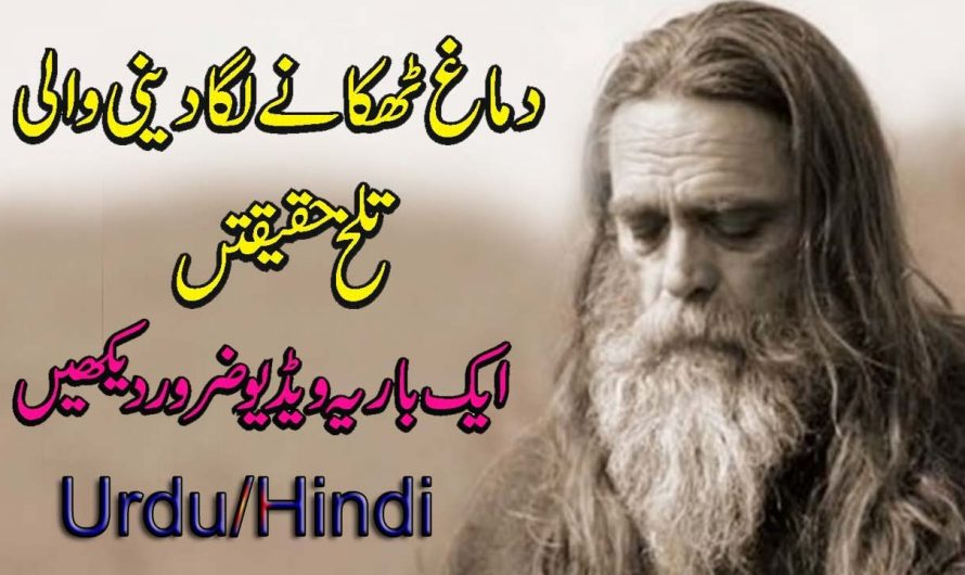 ISHQ : Baba Bulleh Shah (Lyrics Video) Sufi Punjabi Poetry | New Sufiana Kalam Punjabi | M.Naeem
