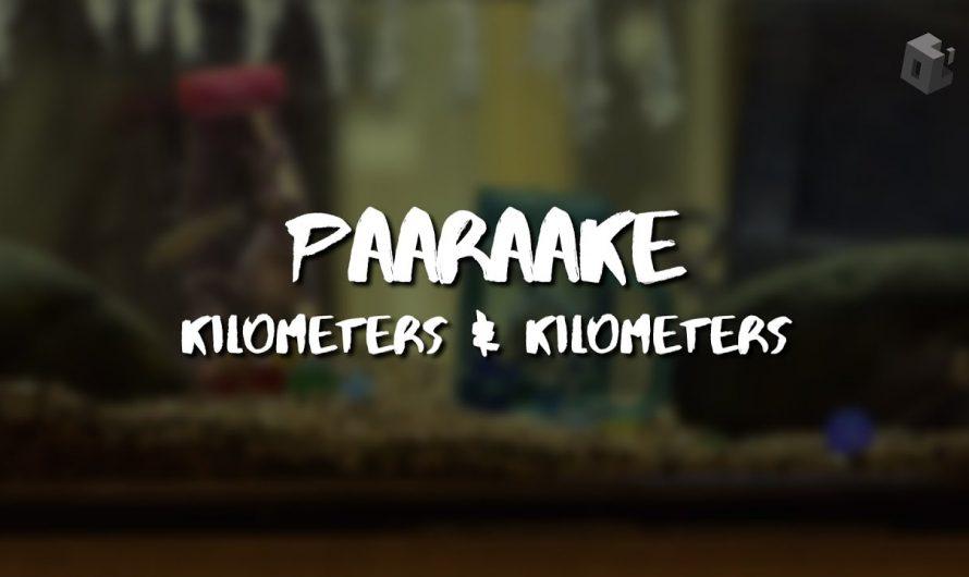 🎧 Paaraake – Kilometers & Kilometers   Lyrics