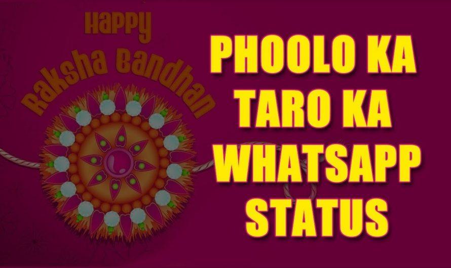 Phulo Ka Taro Ka Whatsapp Status l Rakhi Special   Hindi Lyrics Video