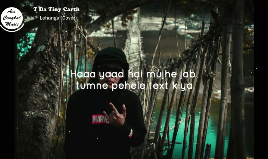 T Da Tiny Carth Lehanga Garo Hindi Cover Remix (Lyrics video)