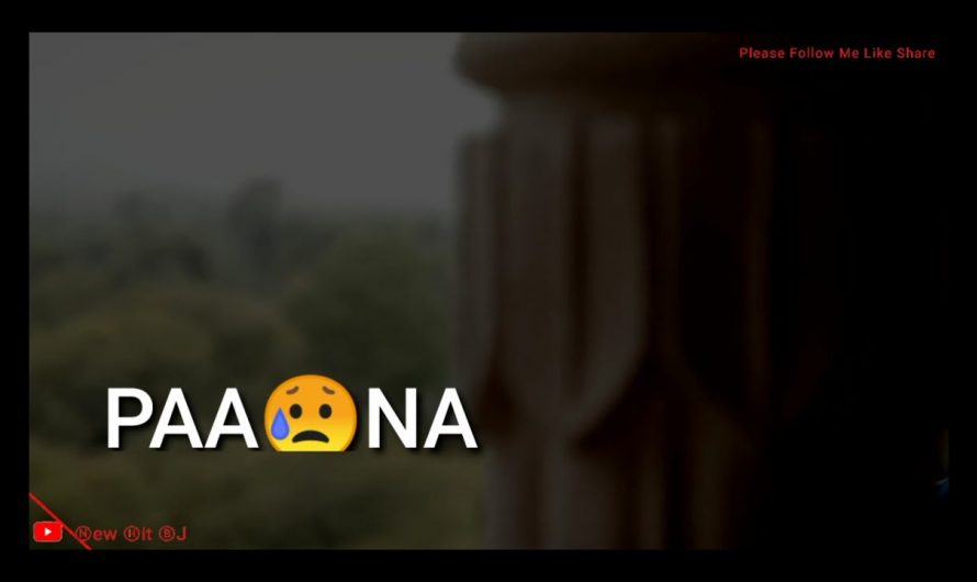 "Dil kehta hai""Paa na tum ko whatsapp status video""Hindi lyrics 
