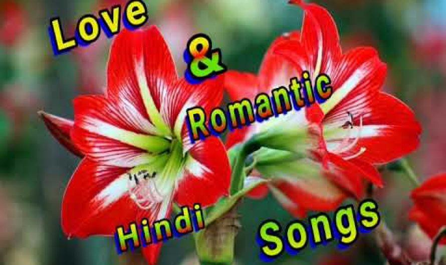 Love & Romantic Hindi Song/ Hindi lyrics / Love story/ hindi / all dj hindi song / Love / romantic /