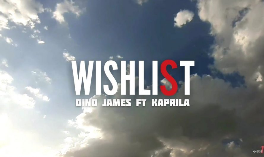 Wishlist ( COVER ) Dino James ft Kaprila |  HINDI LYRICS VIDEO | HUMORAP.18 | Phone Shot