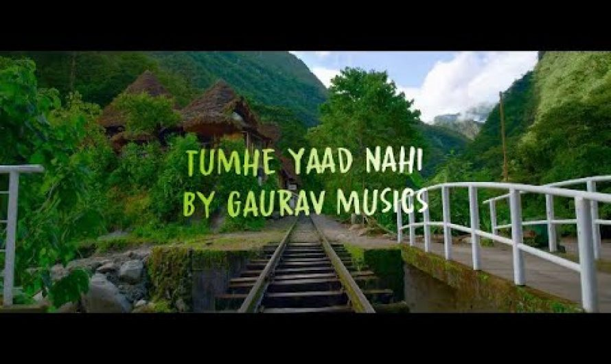 "Tumhe Yaad Nahi | Alan Walker's ""PLAY"" (Hindi Version) 