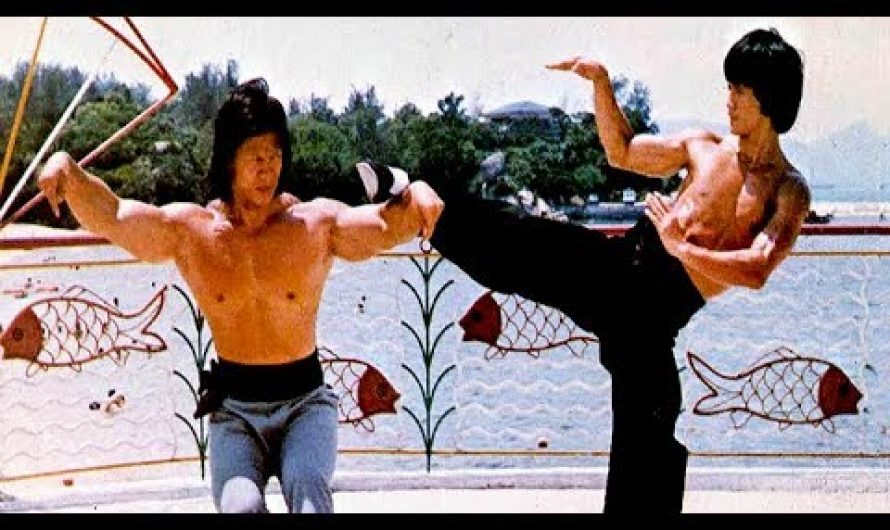 BRUCE – KING OF KUNG FU | The Young Bruce Lee | 醉蛇小子 | 楊斯 | Bolo Yeung | 呂小龍  | Bruce Le | English