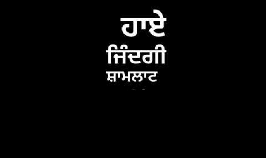 Peeni Ni – G Baljit Lyrics Status Song Video
