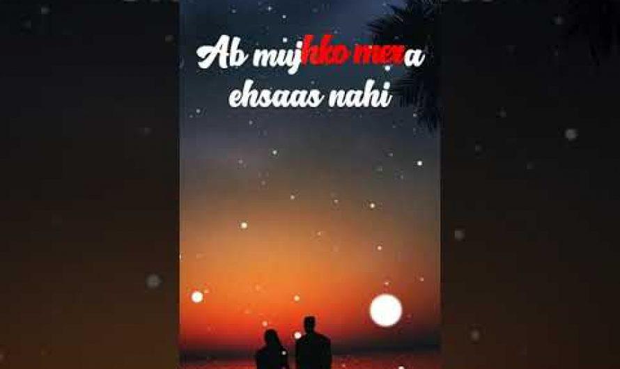 Thoda Thoda Pyaar Lyrics video, Hindi Status video