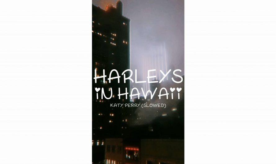 Harleys In Hawaii – New English Song Whatsapp Status Lyrics Video | #Shorts