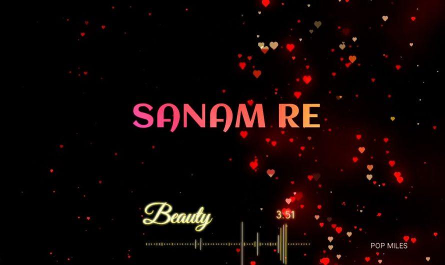 SANAM RE Title Song FULL Lyrics   Pulkit Samrat, Yami Gautam, Urvashi Rautela   ARIJIT SINGH